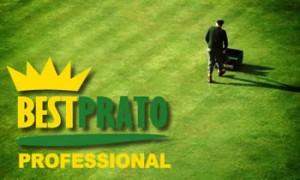 bestprato-professional