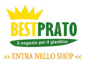 Entra nello Shop di Bestprato