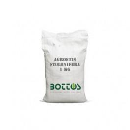 Agrostide Stolonifera - 1 Kg