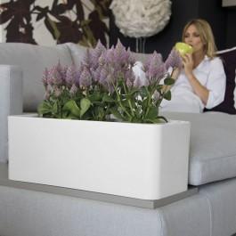 Fioriera a cassetta per vasi e piante Calypso