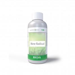 New Radical | Bottos 1Kg