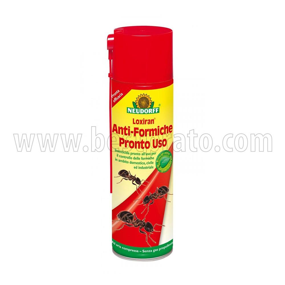 Insetticida naturale per blatte scarafaggi e formiche for Formiche volanti in casa