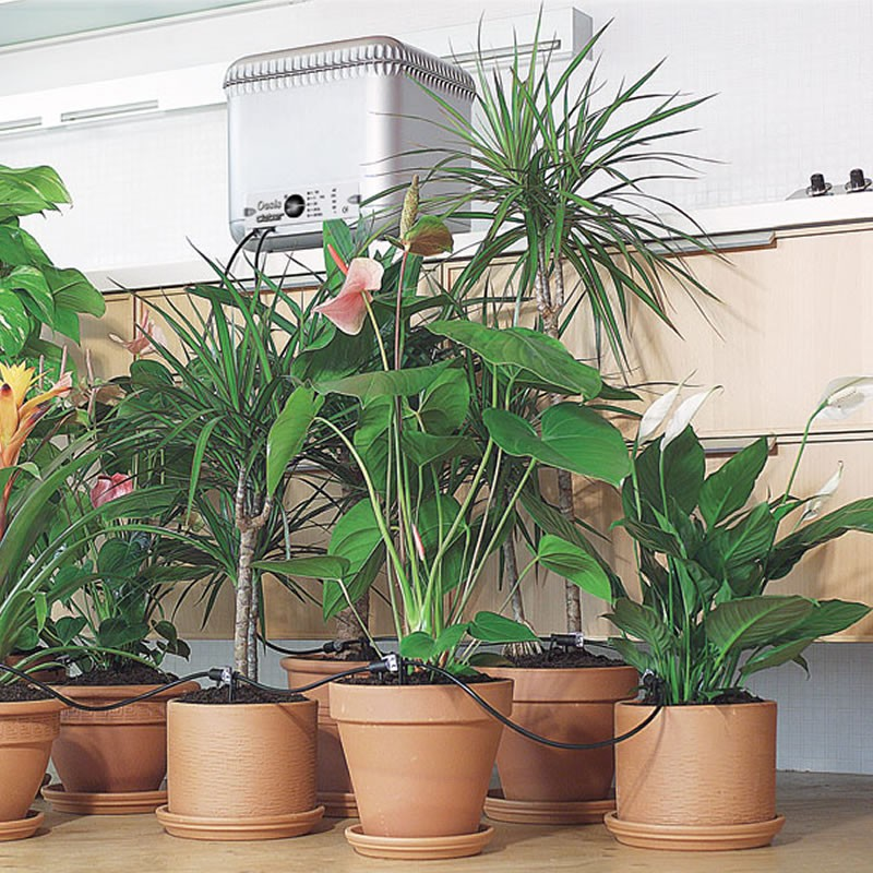 Distributore d\'acqua autonomo per irrigazione goccia vasi e piante ...