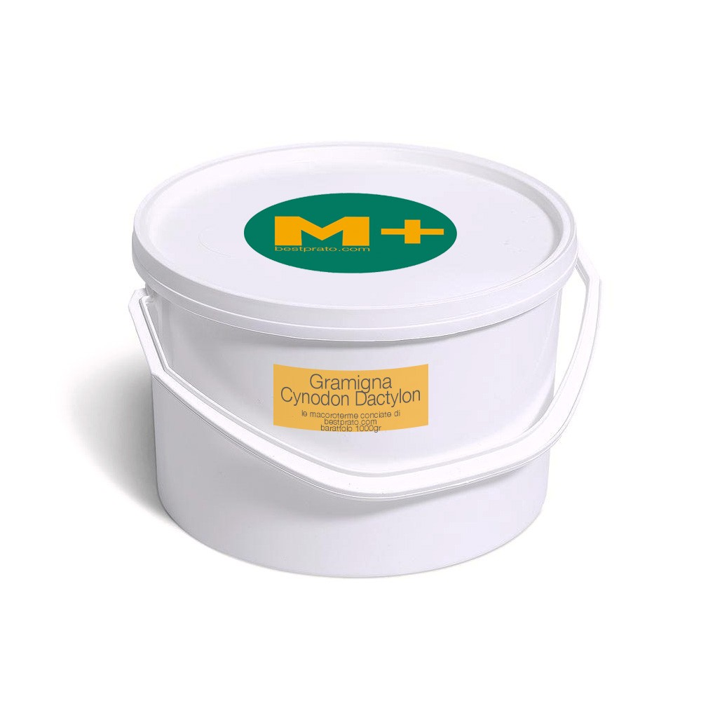 Manutenzione Prato Di Gramignone m+ gramigna | bestprato - 1kg