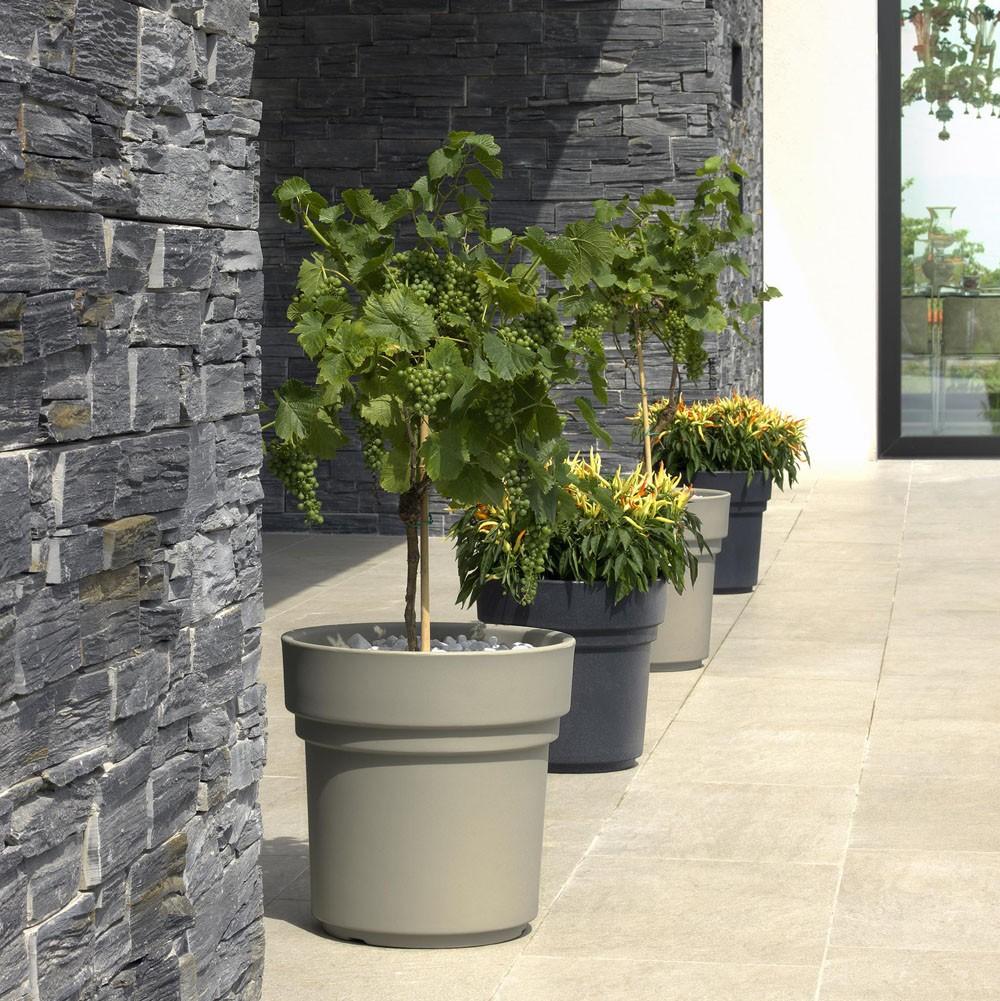 Vaso per piante leon in offerta su for Vasi grandi per interni
