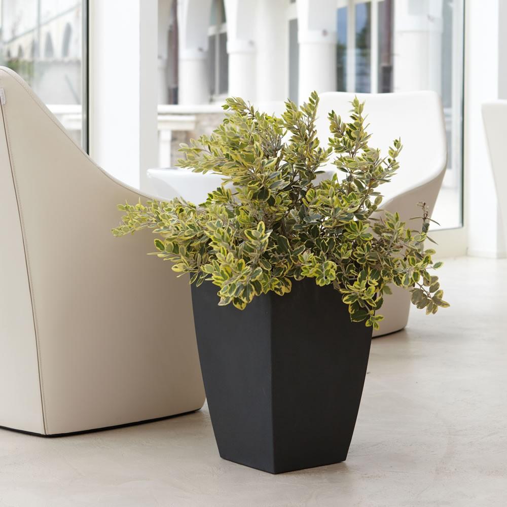 Vaso d 39 arredo e giardino logos nicoli for Vaso da interno moderno