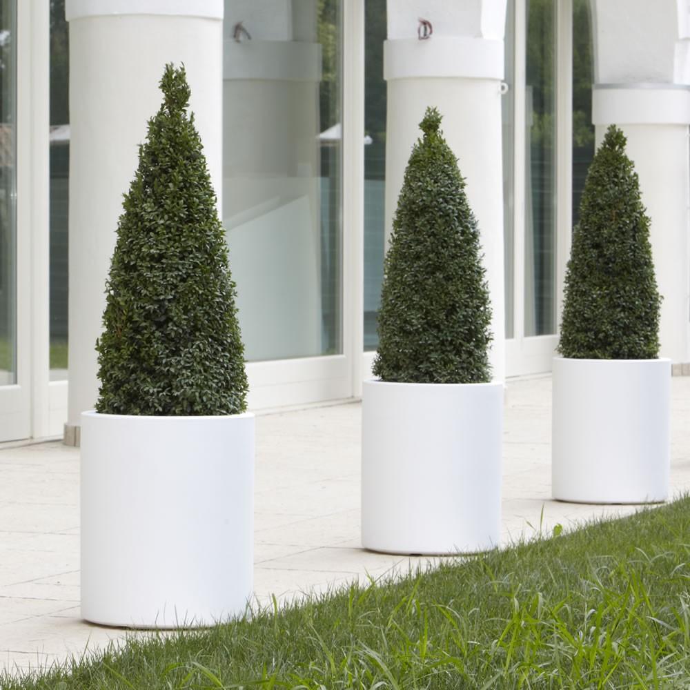 Vasi da esterno offerta promozionale sconto 10 for Alberelli da vaso per esterno