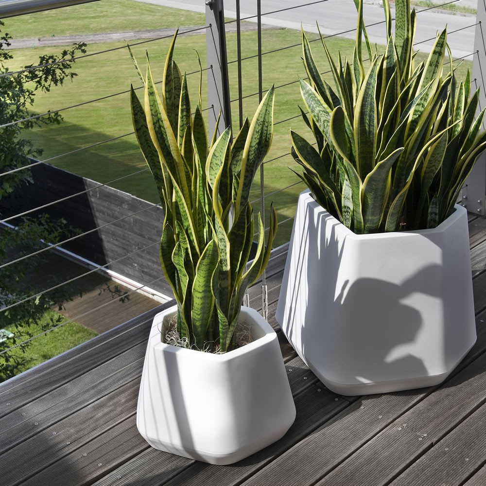 Vaso per piante da esterno e interno ops m nicoli - Piante verdi interno ...