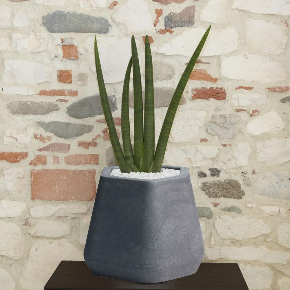 Vaso da interno e giardino ops s nicoli for Vasi grandi per interni