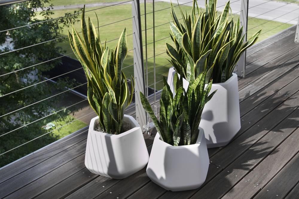 Vaso da interno e giardino ops s nicoli for Vasi da arredamento design