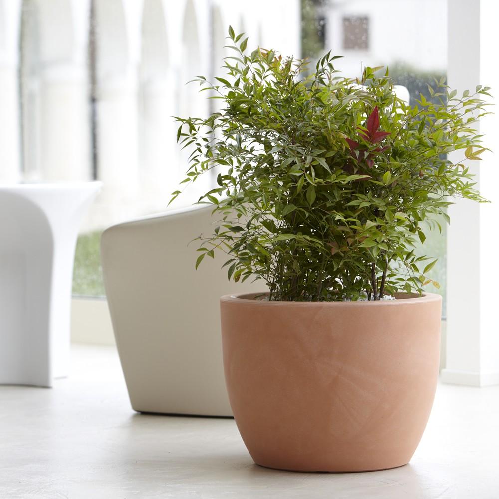 Vaso per piante da interno ed esterno hera nicoli for Piante da esterno in vaso perenni