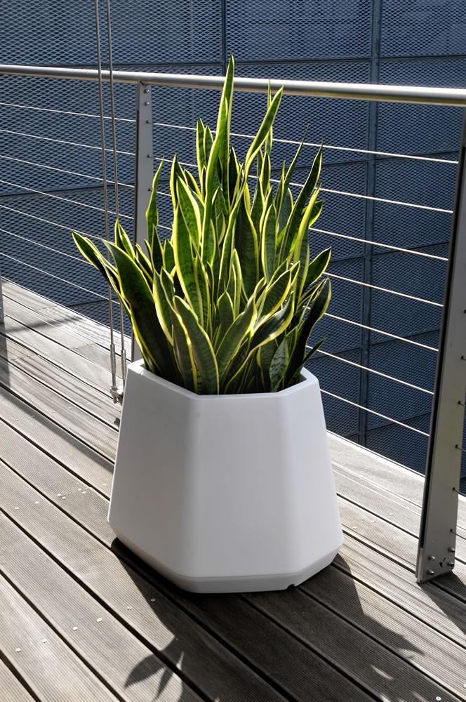 Vaso per piante da esterno e interno ops m nicoli - Vaso da interno ...