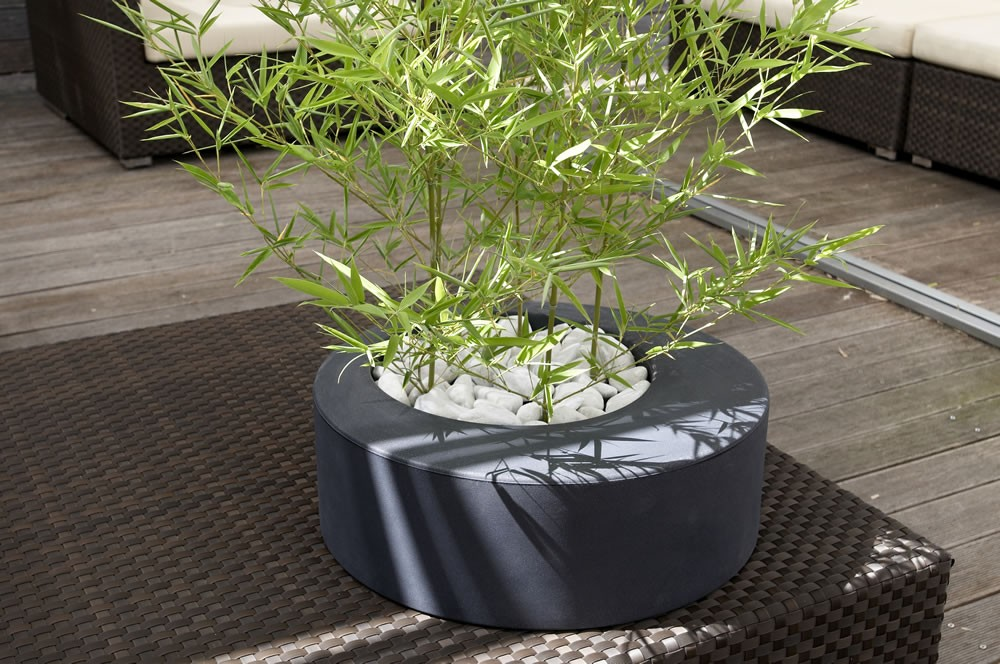 Vaso x piante in resina zoe nicoli for Piante da esterno in vaso
