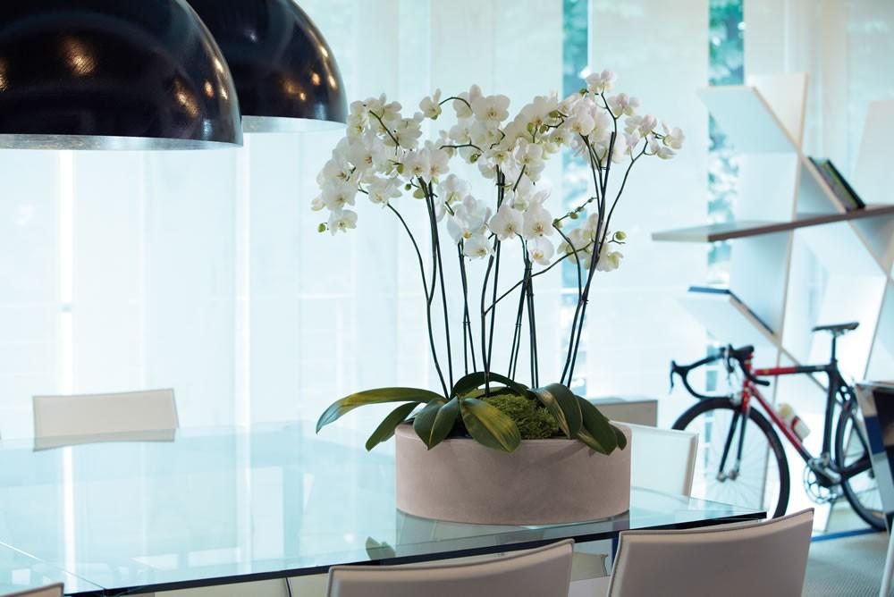 Stunning preloader vaso x piante da interno e esterno zoe for Portavasi da interno design