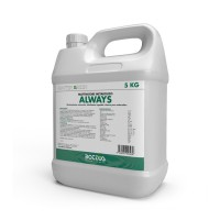 Always | Bottos 5Kg