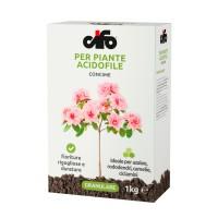 Concime Piante Acidofile   Cifo