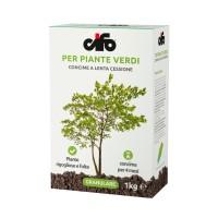 Concime Piante Verdi   Cifo
