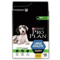 Crocchette Pro Plan Optistart Puppy Large Athletic - Purina