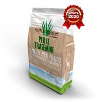 NaturalGreen Trasemina - Semi per prato