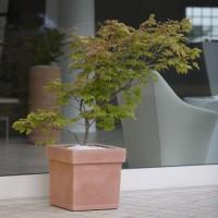 Vaso quadrato in resina Themis