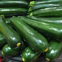 Zucchino Genovese Biologico |  Bestprato by Hortus
