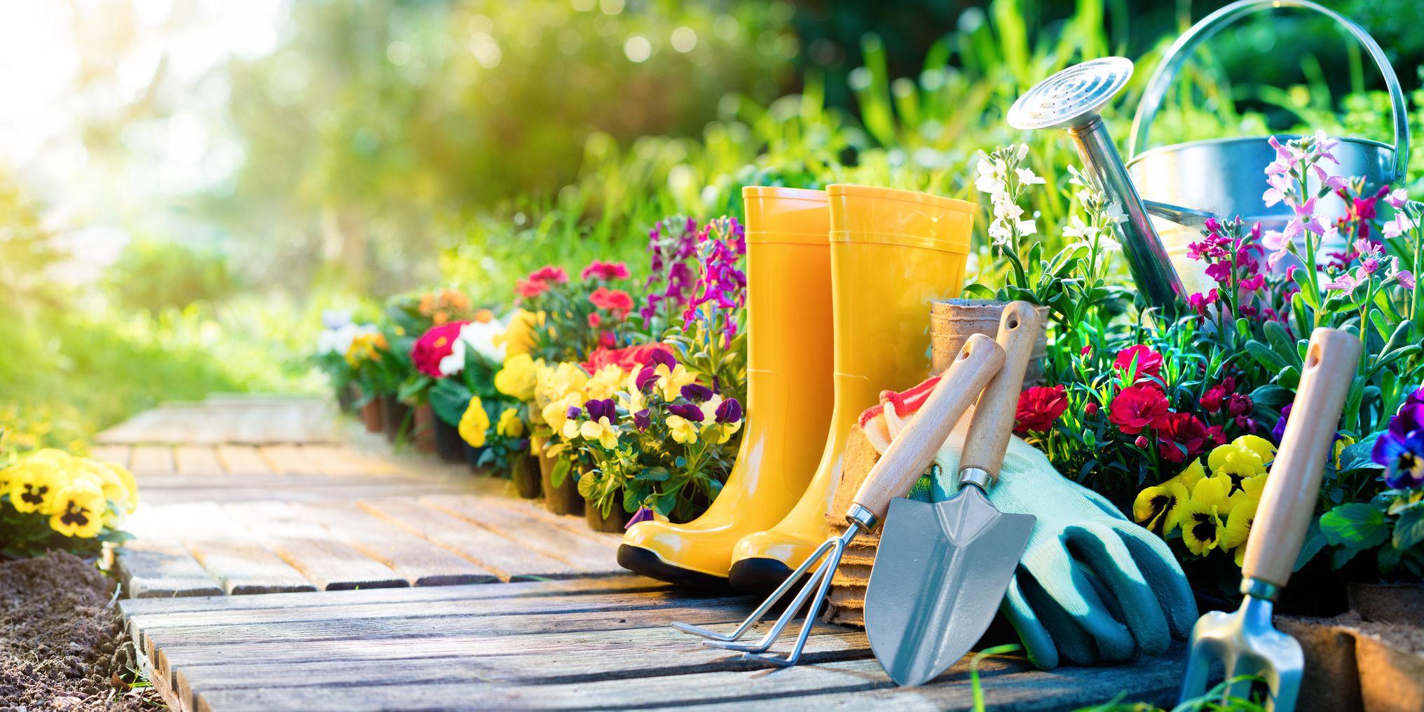 promozioni e offerte di giardinaggio